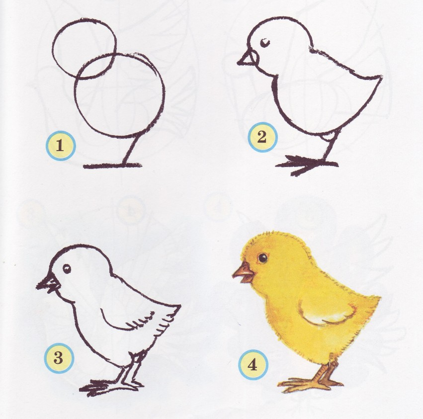 Цыплёнок рисунок раскраска
